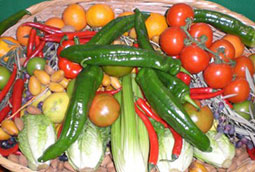Andalucía será la primera región que regule la alimentación saludable