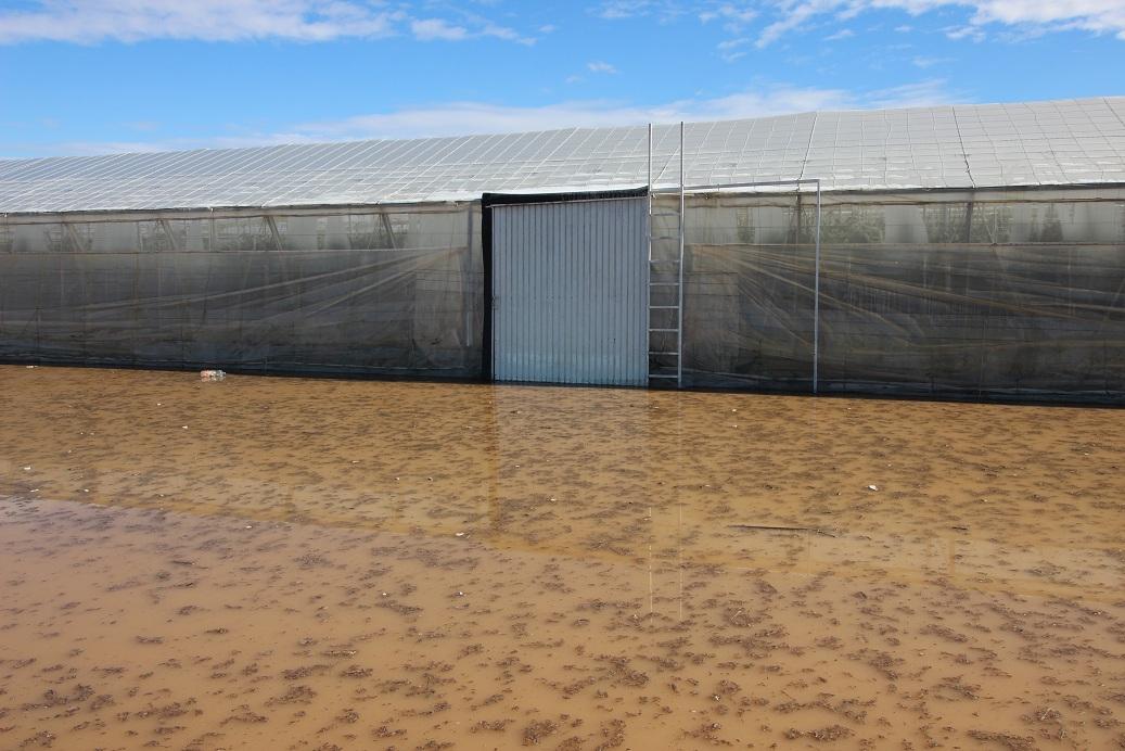 Cajamar habilita financiación para los agricultores afectados por el temporal