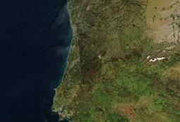 Otro país afectado por las primas de riesgo. Portugal y su sector hortofrutícola