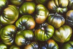 Un tomate con burbujas. Por José Manuel Guerra