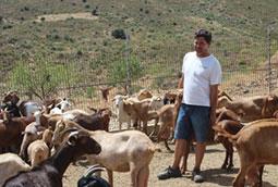 Ganadero de caprino a los 45 años