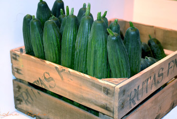 La exportación de pepino y berenjena cerró el ejercicio con el 40% más de valor