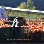 """""""Ser agricultor en la Alpujarra se ha convertido hoy día en un delito"""""""