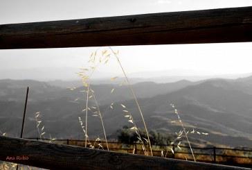 El Proyecto Life Conhabit protegerá las ramblas de Tabernas, Gérgal, Sierra Alhamilla, Cabrera o Punta Entinas