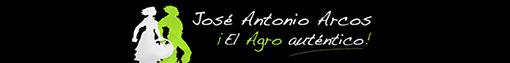 FRONTPAGE-DIVISOR 8- logo-728×90