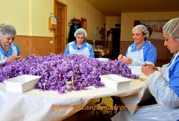 Día Internacional de la Mujer. Una visión desde la agricultura