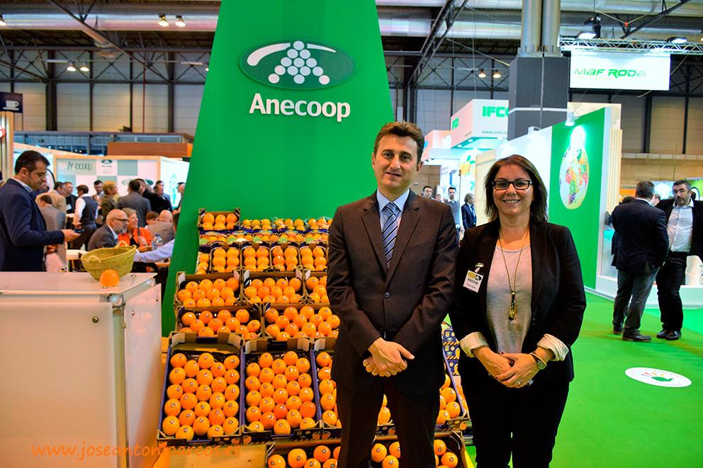 El grupo Persimon de Anecoop crece de 14 a 26 cooperativas