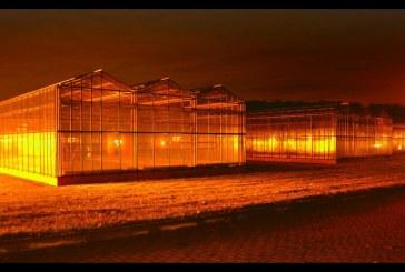 Fotos de invernaderos en Alemania de un agrónomo almeriense