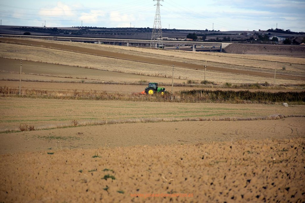 Agriculture-in-Madrid and pesticide