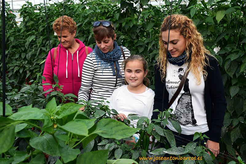 Familia agricultores en El Ejido