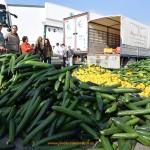 Asaja y Coag piden al Ministerio más dinero por las hortalizas que se retiren