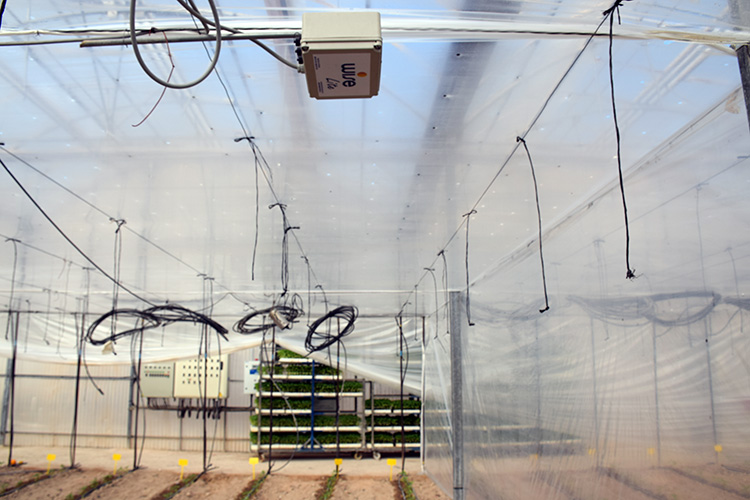Wise Lite en el centro experimental de San Javier, Murcia