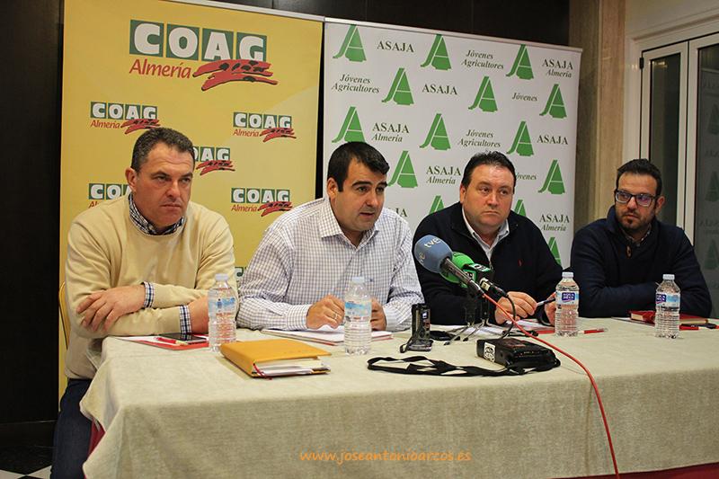 Antonio Moreno (Coag), Andrés Góngora (Coag-Almería), Francisco Vargas (Asaja-Almería) y Ángel López (Asaja)