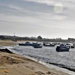 Un domingo entre Sanlúcar y Chipiona