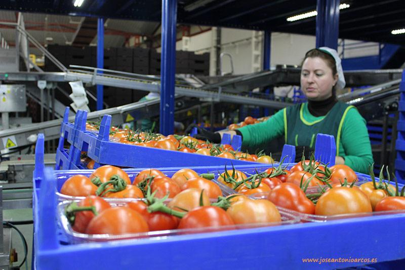 crisis del sector agrícola