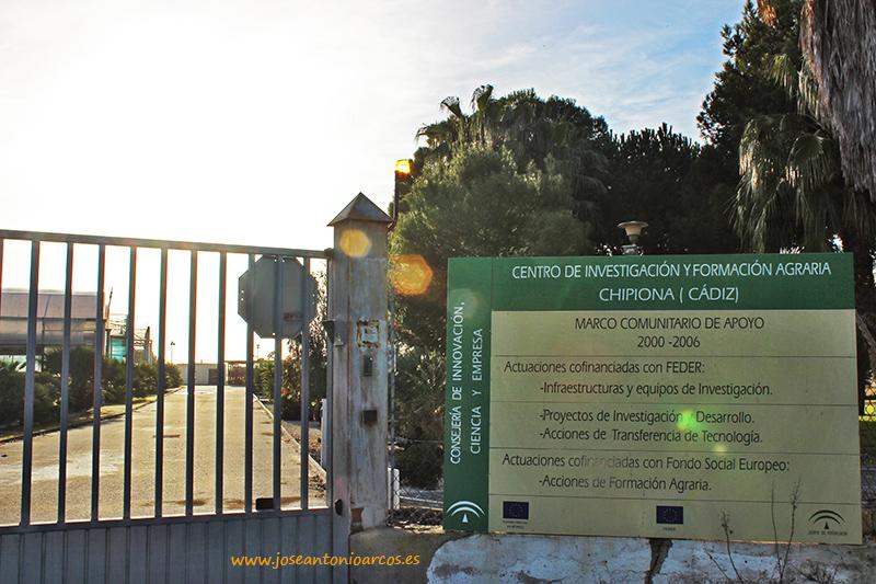 universidad de cantabria jose antonio: