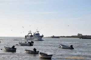 Mirando al Atlántico desde la desembocadura del río Guadalquivir