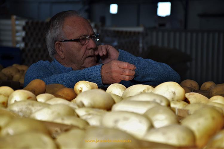 Patatas nuevas de Sanlúcar de Barrameda