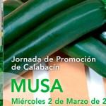 Día 2 de marzo. Jornada de promoción de calabacín Musa de HM Clause