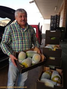 Manuel Ramón Berenguel, productor almeriense de papaya