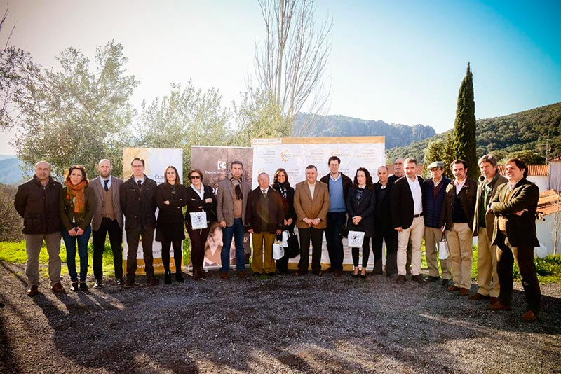 Premios ECOTRAMA a los mejores aceites de oliva virgen extra ecológicos