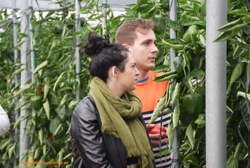 Ayer concluía el plazo para ser joven agricultor y recibir un empujón vía ayudas