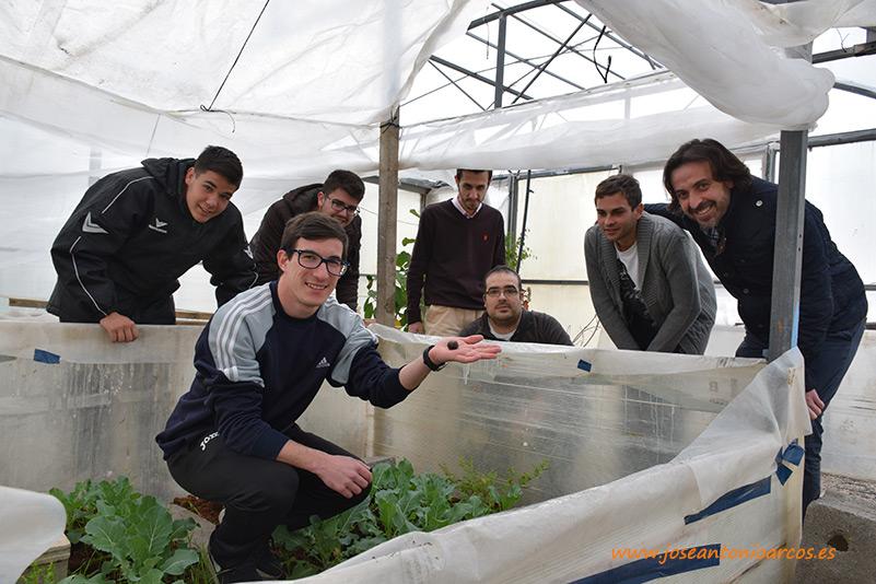 Un mundo puesto al descubierto. El cultivo de caracoles en invernadero