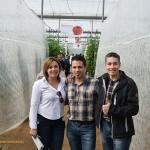 Varios cientos de agricultores alrededor del tomate de Hazera