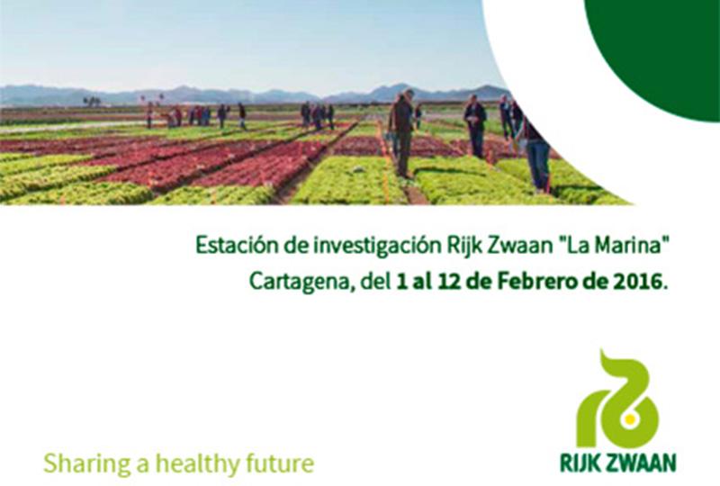 Del 1 al 12 de febrero. Jornadas de cultivos de invierno de Rijk Zwaan en Murcia