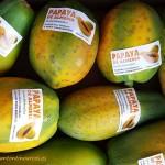 Las papayas del amigo Ramón