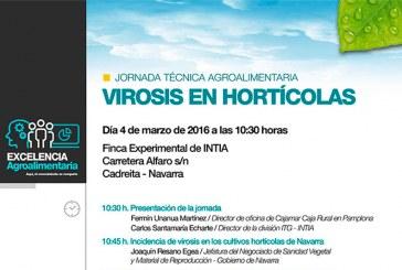 Día 4 de marzo. Jornada virosis en hortícolas en Navarra
