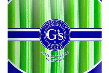 Grupo G's España estrena nueva imagen en Europa