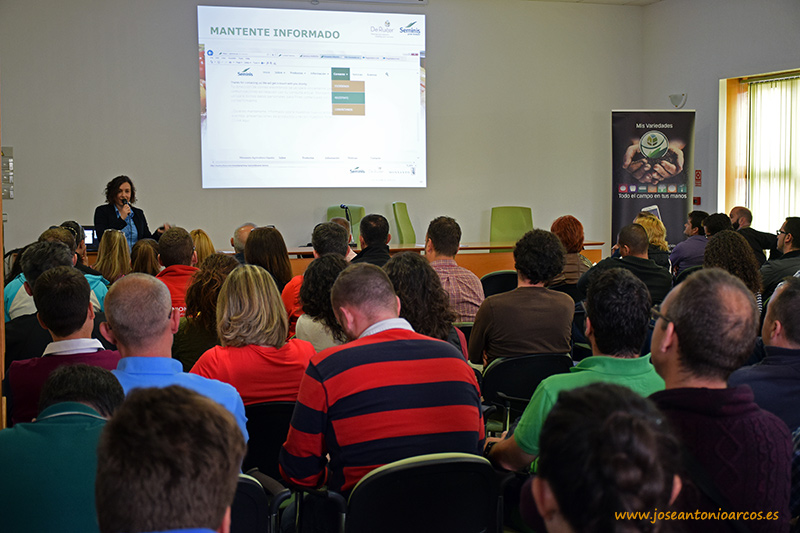 Ana Azor, marketing Seminis Monsanto De Ruiter