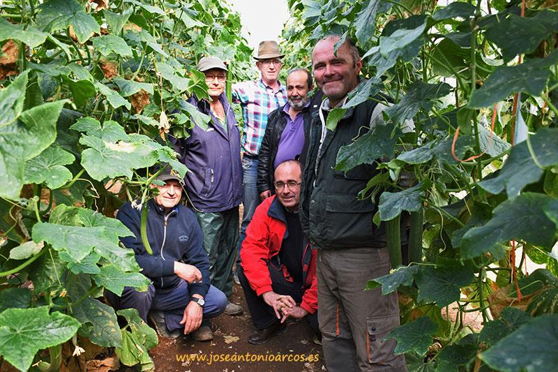 (vídeo) 'Agricultura Viva en Acción', agricultores debajo del invernadero