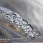 Feral calcula que en 5 meses no habrá agua para regar en el Levante