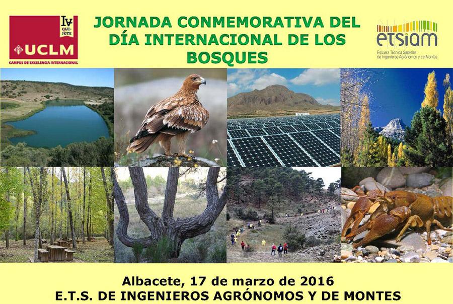 Día 17 marzo. Jornada 'Día Internacional de los bosques' en Albacete
