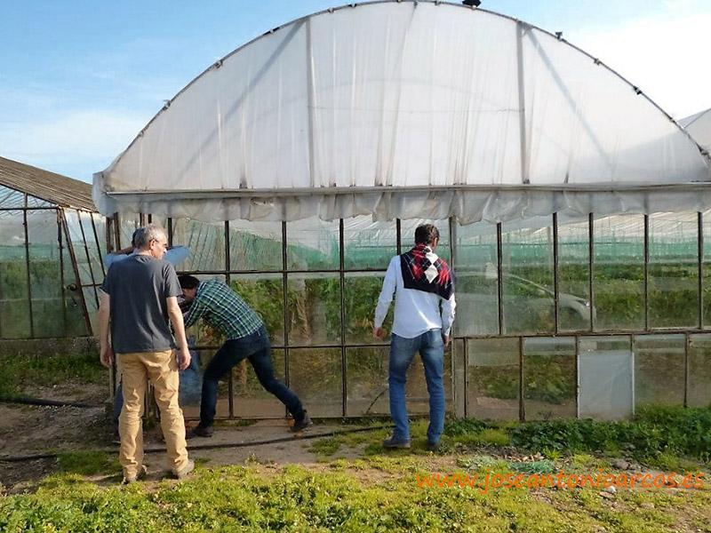Refugiados a cambio de hortalizas. Efectos en la agricultura de la entrada de Turquía en la UE