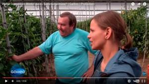televisión alemana en invernaderos almerienses