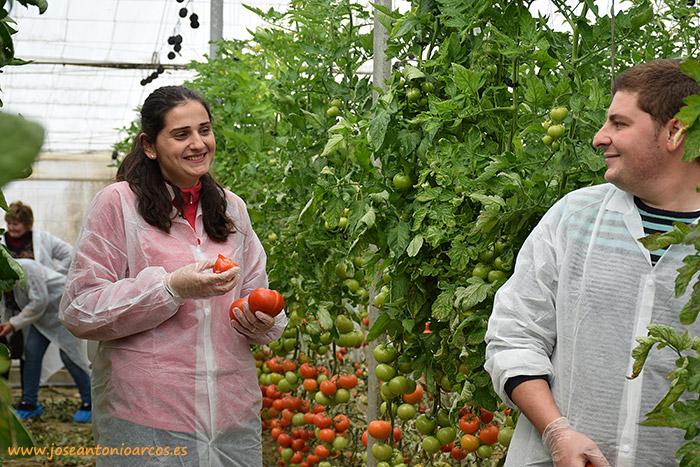 Rocío Soriano y Daniel López, agricultores de tomate de El Alquián, Almería, en un invernadero de Bateyo, Seminis