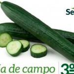Día 3 de marzo. 'Día de campo' con la casa de semillas Seminis