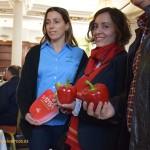 Seminis lanza una App para sus nuevas variedades, como el california rojo SV1215PB