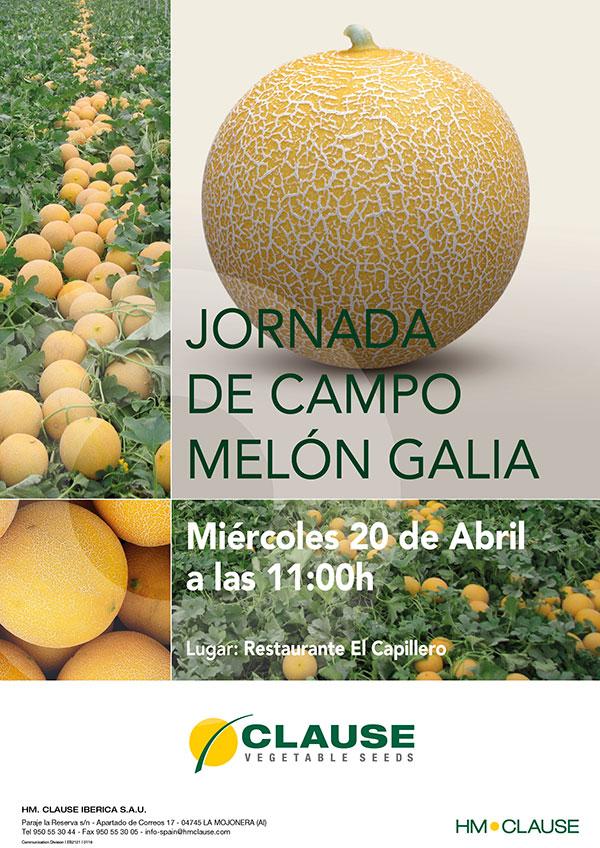 semillas melon Galia