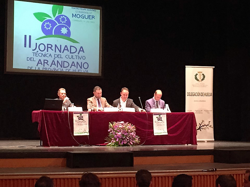 II Jornada Técnica Cultivo de Arándano en Huelva