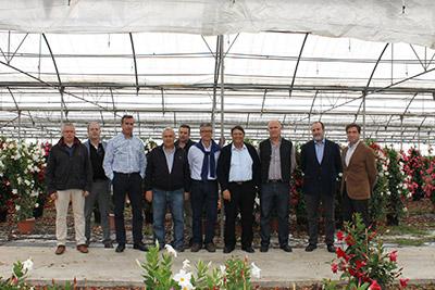 Agricultura plantas ornamentales Almería