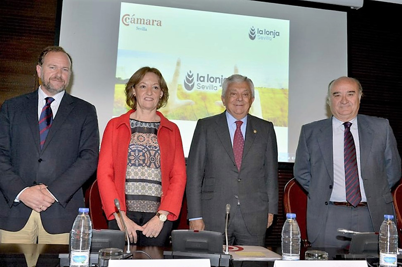 El sector de los cereales en Andalucía: crecen las exportaciones