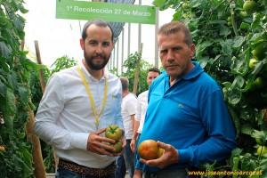 Manuel Ruiz Ayala con Antonio Maldonado, productor de tomate en Dalías.