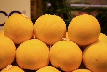 La fruta de hueso española cruzará la Muralla China