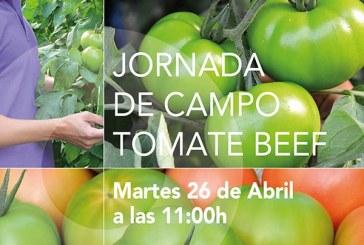 Día 26 de abril. Jornada tomate beef de HM Clause