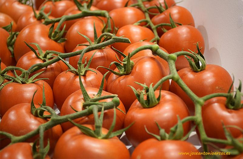 Tomates rama de Zeraim, Guanche y Ganges