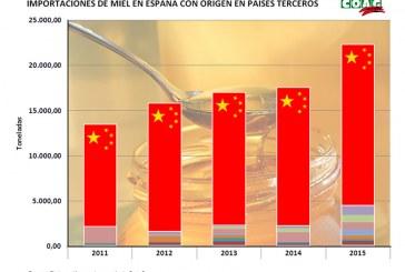 Coag denuncia las prácticas de la industria para hundir el precio de la miel
